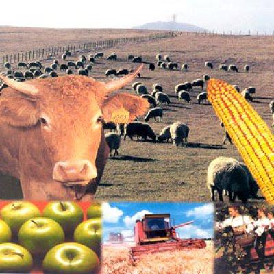 перепись сельскохоз