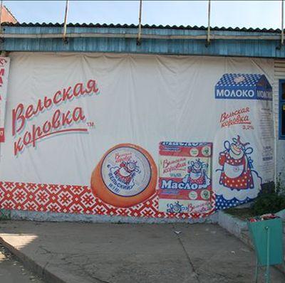 velskaya-korovka
